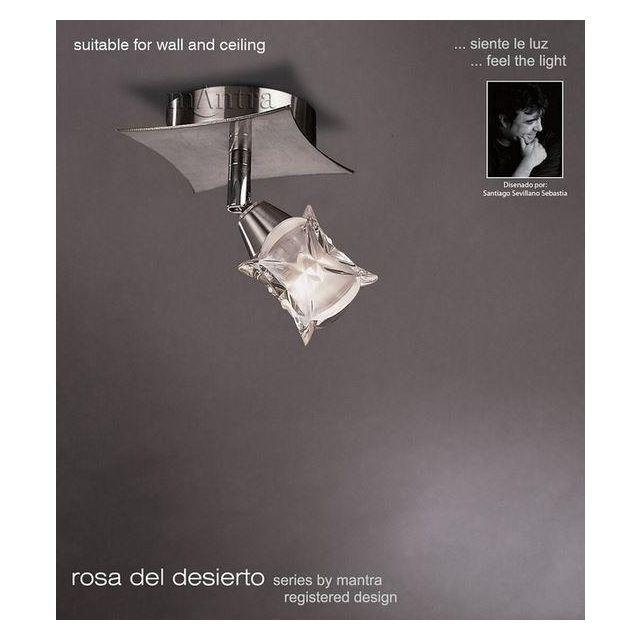 M0041 Rosa Del Desierto 1 Lt Chrome Flush Ceiling Lamp