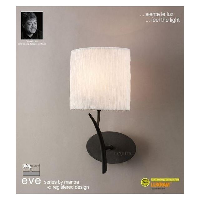 M1154/S Eve 1 Lt Anthracite Switched Wall Lamp With Ivory Shade
